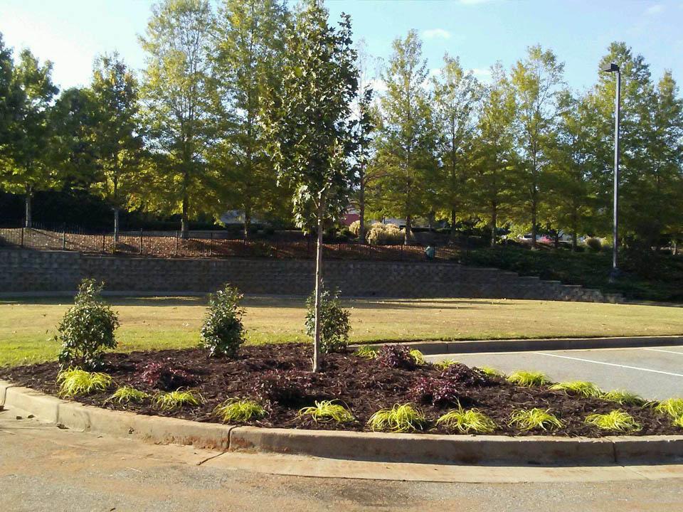 Commercial Lawn Maintenance 1